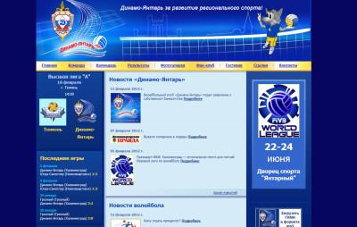 Волейбольный клуб «Динамо-Янтарь»